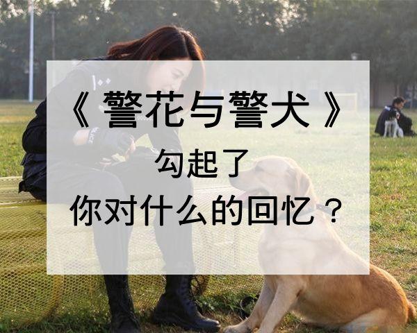 樱桃_600_副本.jpg